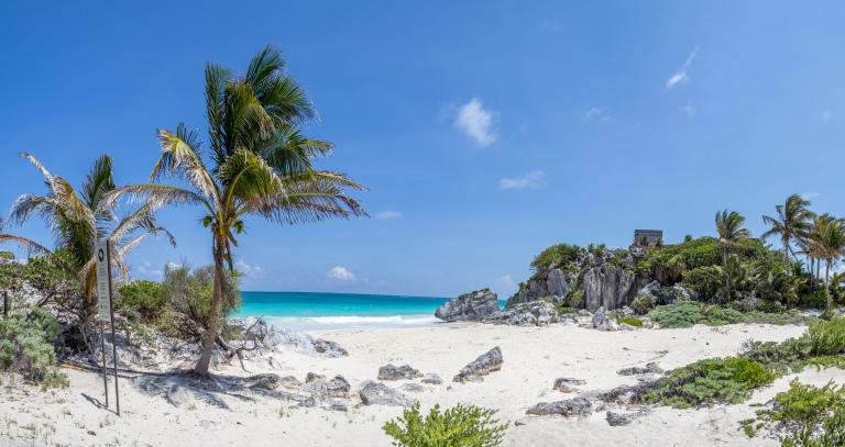 Stranden der bliver brugt af hav-skildpadderne til at lægge æg.